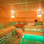 Wellness spa fínska sauna 1